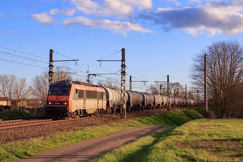 489482 Sibelin Gevrey à Crèche-sur-Saône.