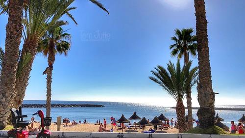 Playa del Camison, Playa de las Americas, Tenerife, Spain -  3190