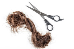 A bundle of cut hair with scissors on a white background. Haircut, change concept