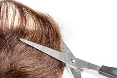 Brown hair with scissors on white background