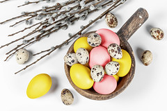 Top view, colored eggs with willow branches on a white background