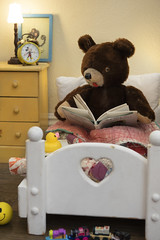 Benny the Teddy Bear