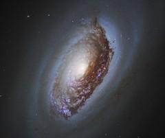 NGC 4826