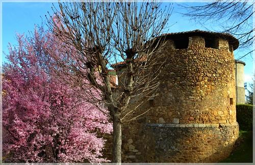 Torre de la antigua muralla - Almanza