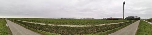Friesland, De Blijnse