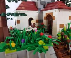 Bird House and a Human House