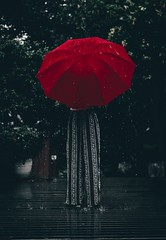 Person standing using red umbrella - Credit to https://homegets.com/
