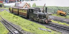 Hambleton Valley passenger train