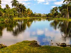 Fairchild Tropical Botanic Garden_2020