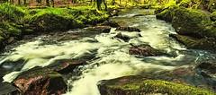 Golitha Falls 4 (Golitha a' gas dynergh). Nikon D300s. DSC_3011.