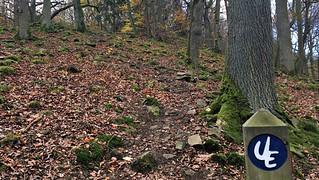 Urwaldsteig sign post