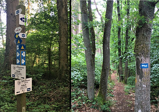 Trail sign posts - Lee Trail