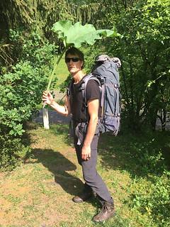 My umbrella - Lee trail