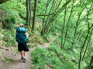 Exploring the Lee trail