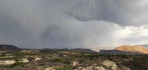 Extraña nube en forma de serpiente, durante la tormenta de ayer en Juchipila Zac.