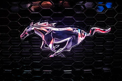 Ford Mustang logo on a car