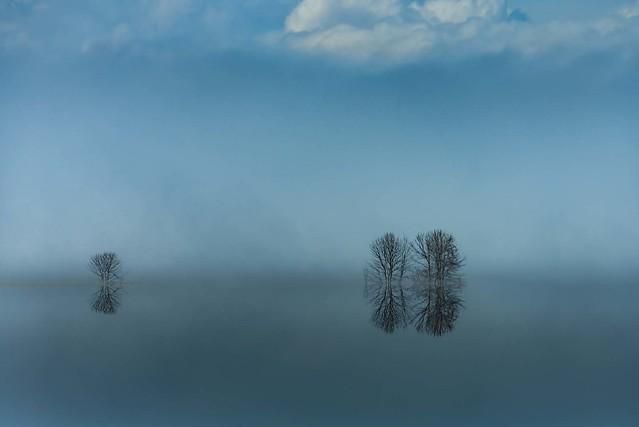 L'eau réflexions