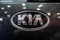 KIA company logo on a car close-up