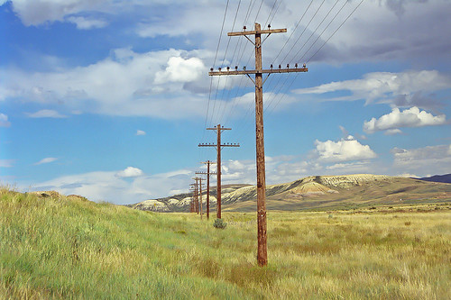 Open Wire in the Prairie