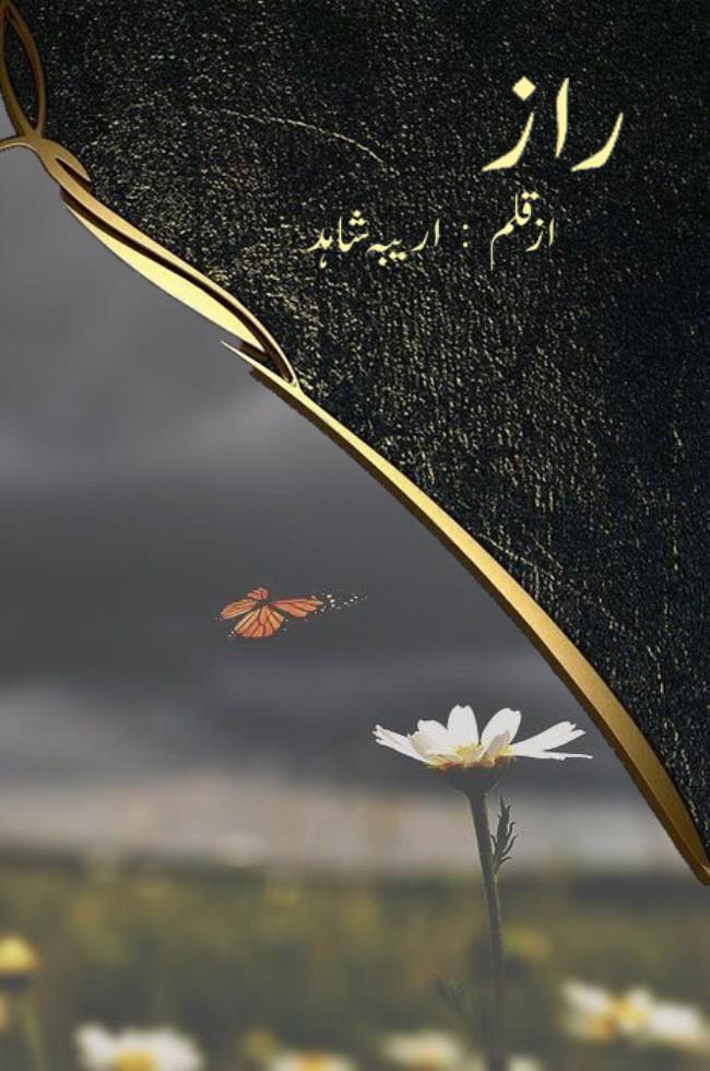Raaz Novel By Areeba Shahid,Raaz is a very intresting and suspensive urdu novel by Areeba Shahid .