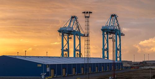 Zeebrugge Port IMG_3287