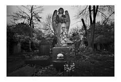 Highgate Cemetery 2020