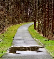 Walker Mill Regional Park Trail