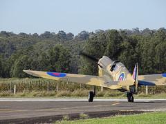 Curtiss P-40 Warhawk RAF