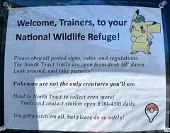 Welcome Pokemon Go Trainers