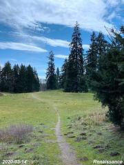 Centennial park and adjacent trails