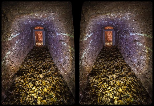 New red conglomerate 3-D / CrossView / Stereoscopy