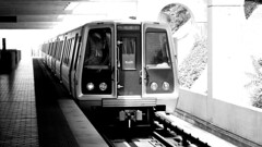 Blue Line train at Huntington [01]