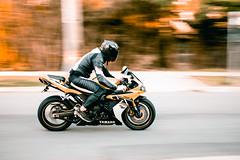 Speed Freak R1