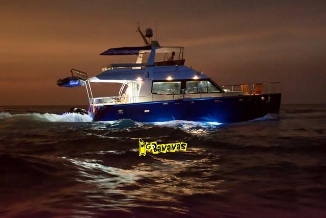 Blue & White Catamaran