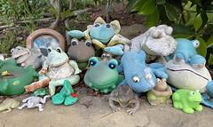 2020_03_21_frog-shrine_001