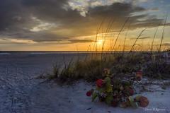 Holmes Beach sunset2