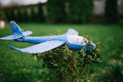 Toy airplane stay in field.