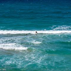 Gone Surfing ...