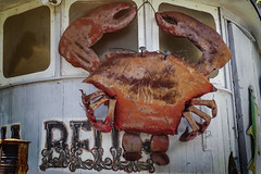 Sea Hagg Crab