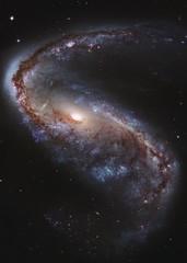 Meathook Galaxy (NGC 2442)