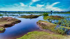Thol Lake, India