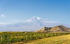 Areni / Ararat - Armenia