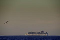 Crucero en el nuevo mundo del coronavirus | 200322-5519-jikatu