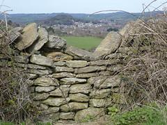Dry Stone Wall and Bridport