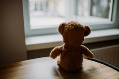 Cute teddy bear is sitting on the wooden desk and looking out of the window.