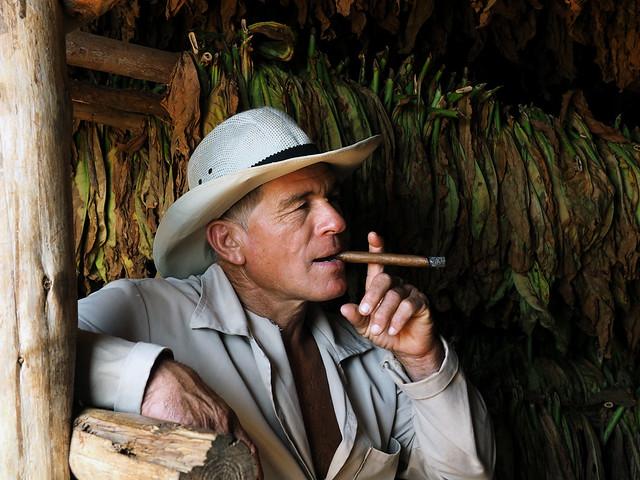 L'art de savourer un cigare