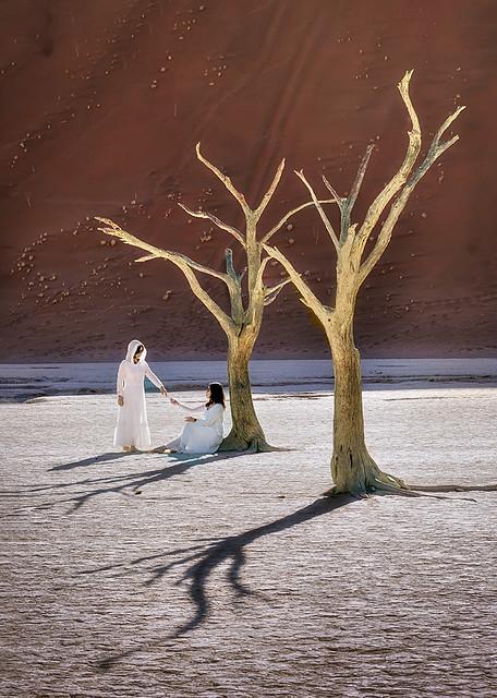 Anges du désert