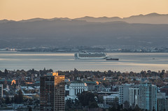 grand princess drifts around the central bay