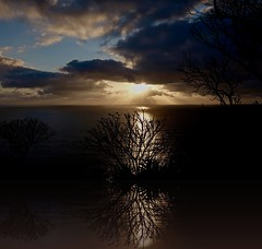 Reflections in the sea