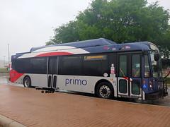 947 103 (6) Zarzamora PRIMO